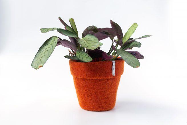 Aveva Flower Pot 20 Rust L